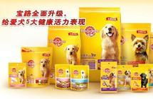 宠物食品:如何挑选狗粮?五大品牌狗粮盘点