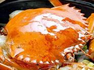 致富汇:开一个肉蟹煲店多少钱