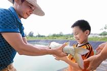 渔业:右江区建立多生态养鱼网箱带给农民好处多