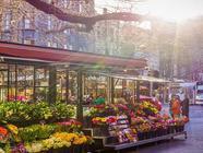 致富汇:开一家花店怎么样,能赚钱吗
