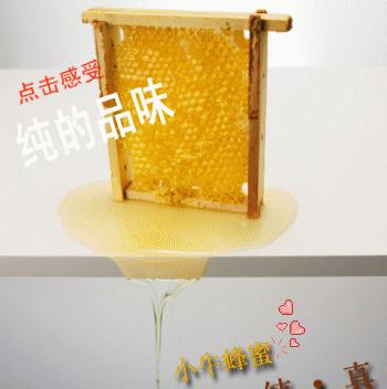 小牛蜂蜜加盟