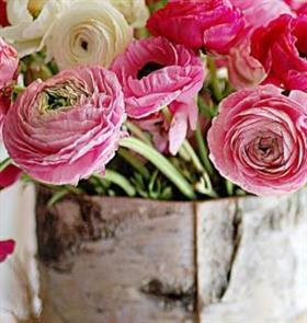 蓓蕾鲜花加盟