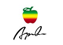 美国苹果男装加盟