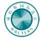 威特斯国际洗衣加盟