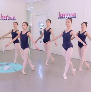 Isee灰姑娘芭蕾项目图片/20200322/5122753215254c8589d6490b8acbba18.png1