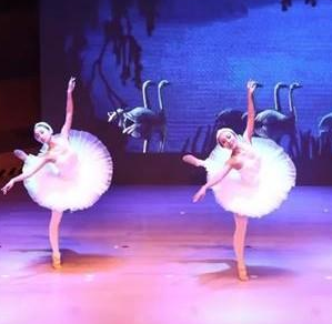Isee灰姑娘芭蕾项目图片/20200322/d8362f02ac12442c8d2da59f559c818f.png1